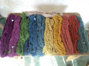 Natural Dye Project Blog Posts