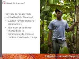 Fairtrade Carbon Credits
